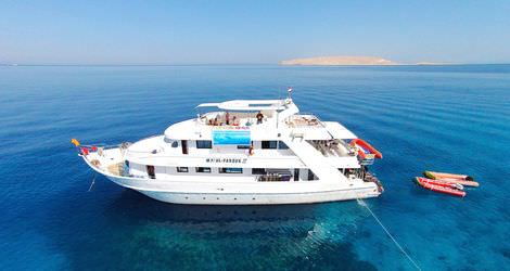 Diving Safaris in Red Sea